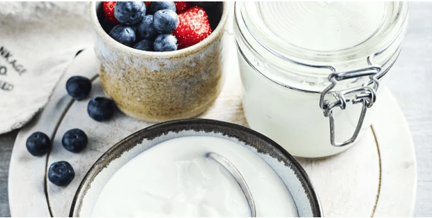 best probiotic foods to add to your diet