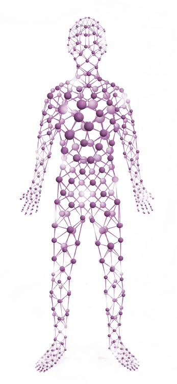 full body outline by atom drawing