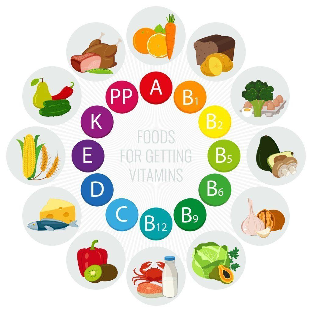 circular representation of vitamin and food types